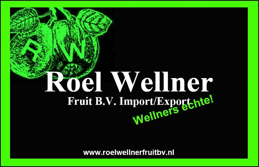 Roel Wellner